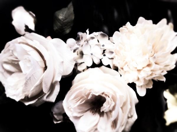 Orl 8460 1 Floral Inspiration 14 Art   Irena Orlov Art