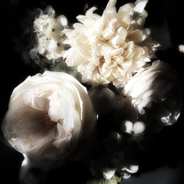 ORL-8468 Floral Inspiration 22