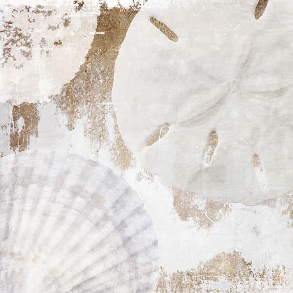 Orl 1400 White Shells Art | Irena Orlov Art