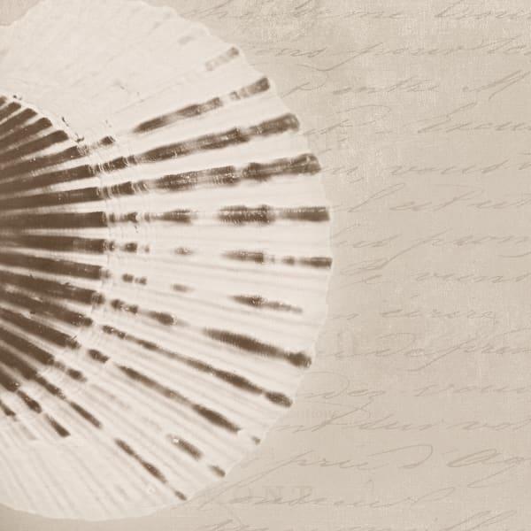 Orl 1429 Modern Scallop Shell I Art | Irena Orlov Art