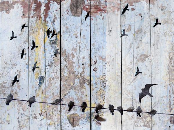 Orl 1122 Spring Birds I Art | Irena Orlov Art