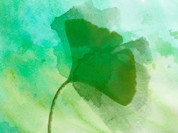 ORL-2007 Summer Leaf III