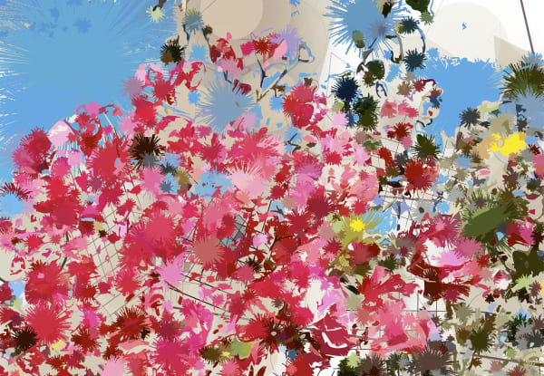 Bougainvillea by Peter McClard as seen in Santa Barbara, CA, at VectorArtLabs.com