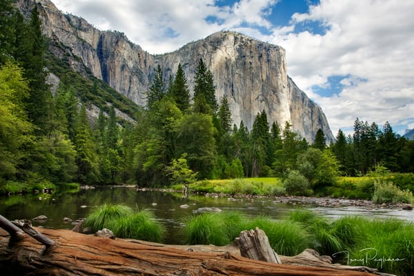 El Capitan Fine Art Photograph for sale by Tony Pagliaro