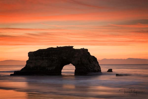 Natural Bridges - Santa Cruz fine art photograph by Tony Pagliaro