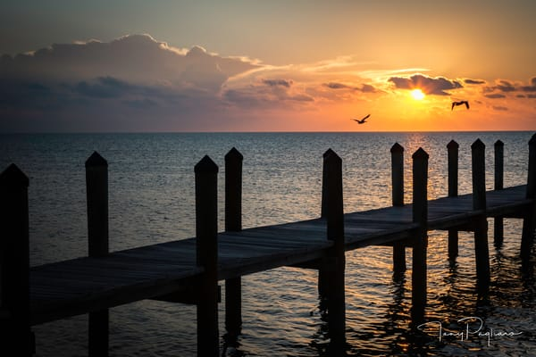 Sunrise At Islamorada   Florida Keys Art | Tony Pagliaro Gallery