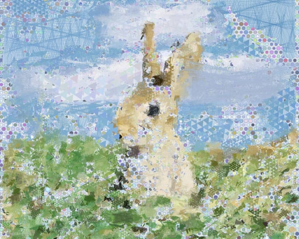 Bunny rabbit Art Print by Peter McClard - at BrillianceGallery.com