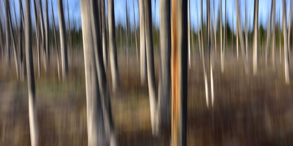 Impressionistic Photographs - Motion Blur Imagine Impression - Fine Art Prints on Metal, Canvas, Paper & More By Kevin Odette Photography