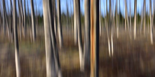 Impressionistic Photographs - Motion Blur Imagine Impression - Fine Art Prints on Metal, Canvas, Paper & More By Kevin Odette Photography