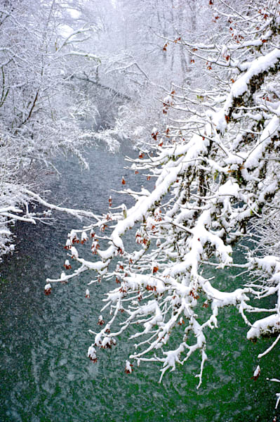 Awesome Winter Snow Scene Prints from Oregon