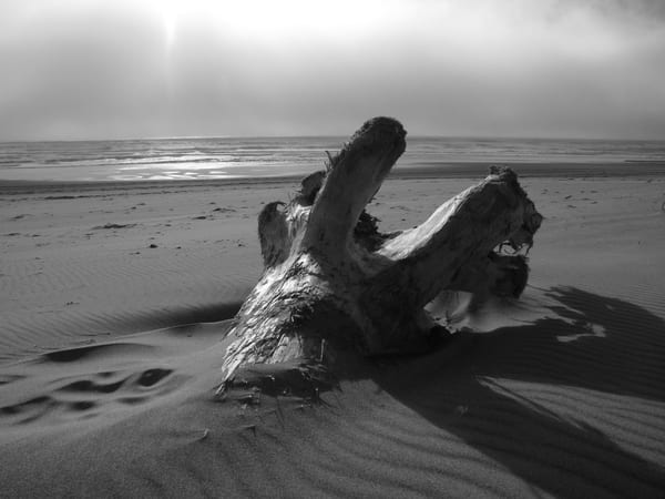 Abandoned   Oregon Coast Photography Art | Photoissimo - Fine Art Photography