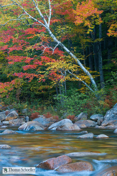 New England's stunning fall colors captured in this fine art landscape/Kancamagus beauty along the Swift River NH/Fine art by Thomas Schoeller