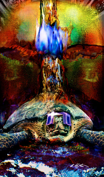 Turtle Art by Alyssa Hinton-Original-Mixed Media Paintings-Fine Art Prints on Canvas, Paper, Metal & More