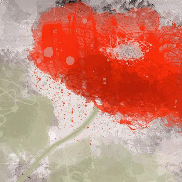 Summer Flower Splash 8 Art | Irena Orlov Art