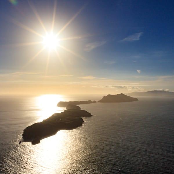 Channel Islands Sunburst