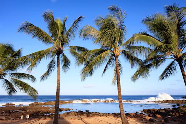 """Northshore Oahu"""