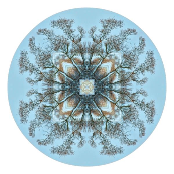 Nature mandala photographs for sale as fine art.