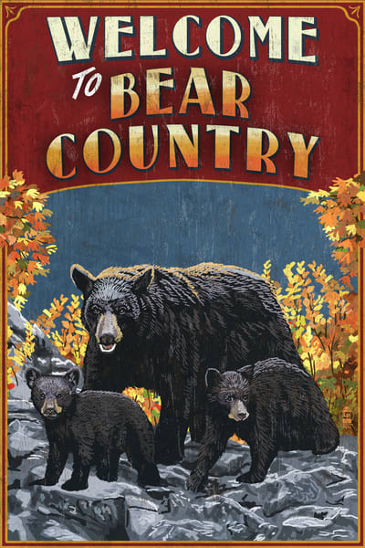 Bear Country - AL-LANPRE157205