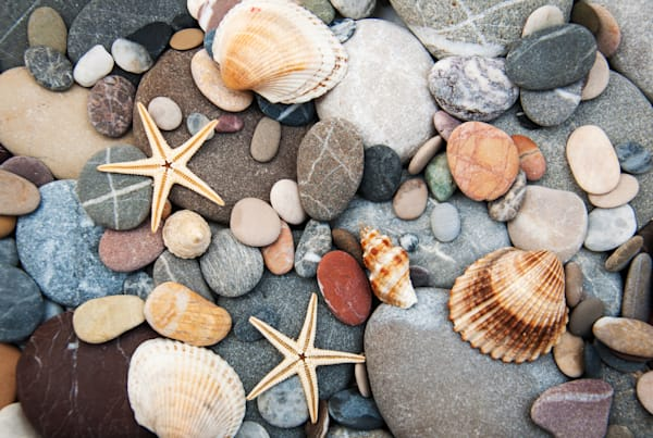Background of Pebbles - DPC_92954956