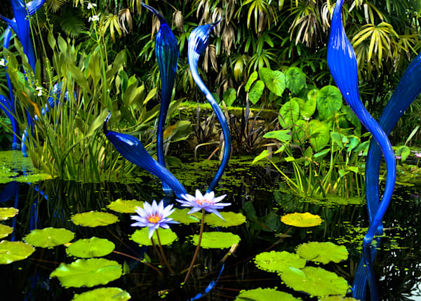 Chihuly in Fairchild Gardens | Travel Photo For Sale