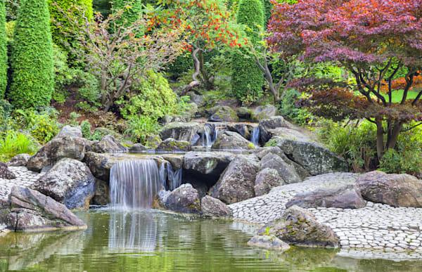 Cascade Waterfall in Japanese Garden - DPC_70530798