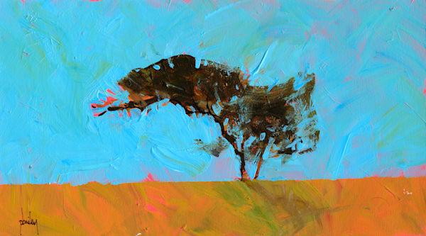 Desert Tree, B3192D.by Bailey, Paul