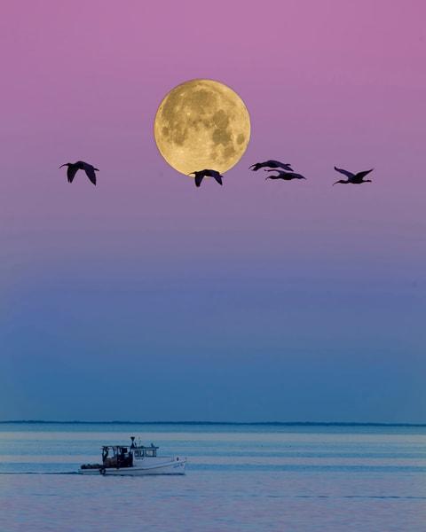 Homeward Bound Photography Art | John Martell Photography