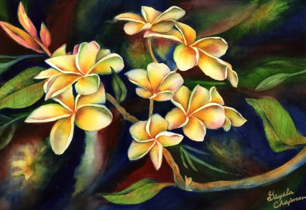 Plumeria Flowers art by Gayela's Premiere Watercolor|Main Store
