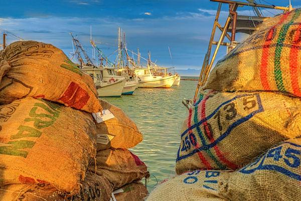 Oyster Sacks Photography Art | John Martell Photography