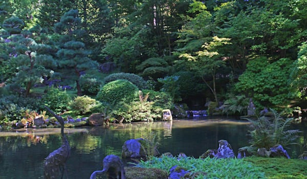Japanese Gardens-in Washington Park--Portland, OR