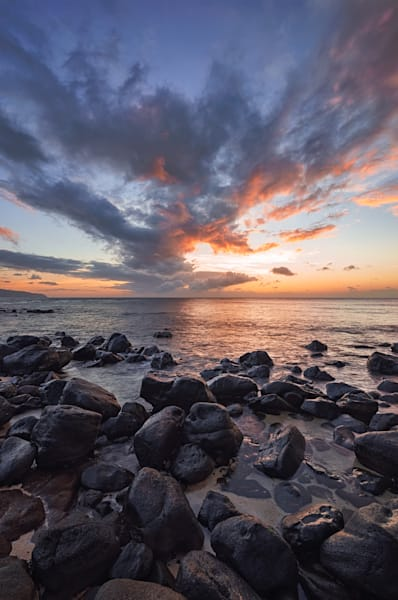 Aligators Shaka Sunset Art | Pictures Plus