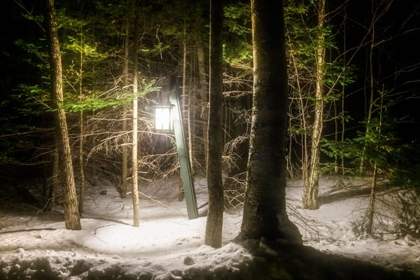 Light in the Forest, light post in dark pine woods with snow