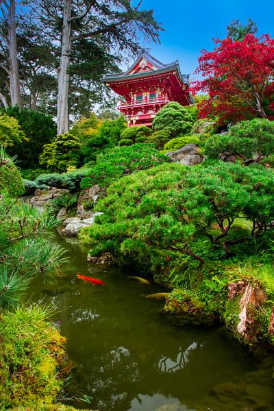 Japanese Tea Garden Photography Art | John Martell Photography