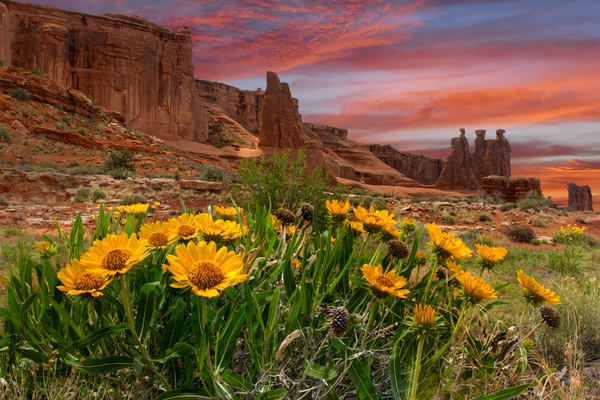 Sunset On Balsam Root & Three Gossips photograph for sale as art by Mike Jensen