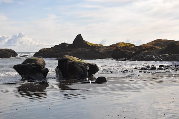 Olympic National Park, coastal view by Ryn Arnold