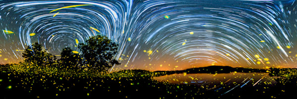 Fireflies of the Ozarks - 360 Panorama