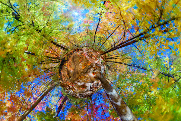 Fall Colors & Blue Sky Planet Panorama