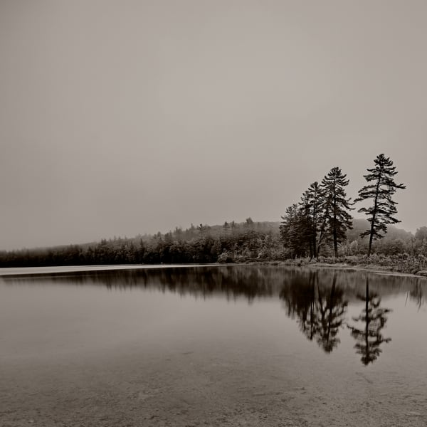 Sepia-toned Pleasant Pond