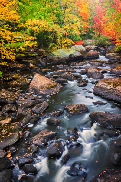 White Mountain Fall Rapids