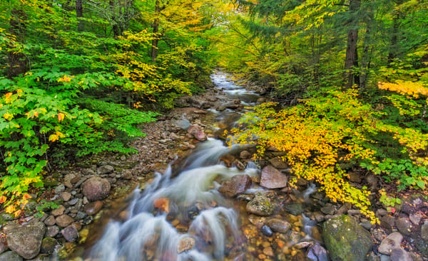 New Hampshire's Zealand River in Autumn