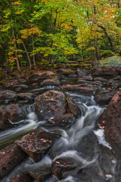 Fall Rapids