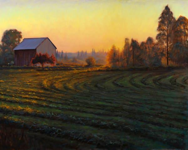 Morning Light, shy Deere