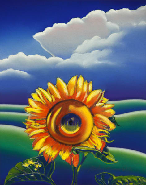Sunflower by Michael Duane