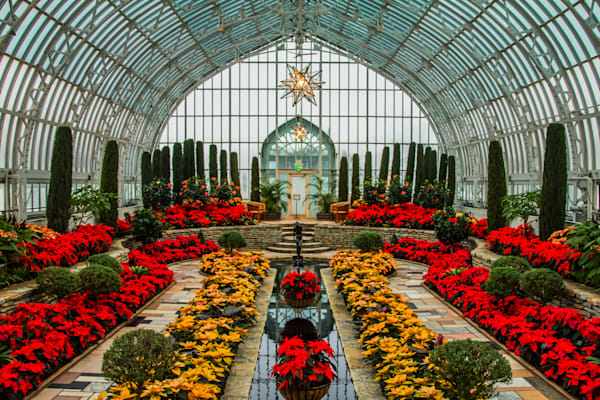 Christmas Conservatory - Christmas Art | William Drew