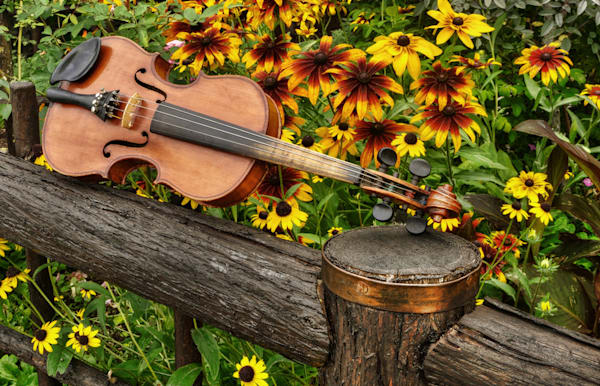 Music in the Garden, original violin artwork by Instrumental Art