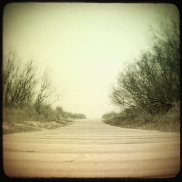 Wildwood Beach Path photograph - for sale as fine art prints