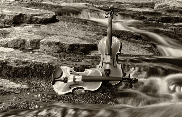 Harmony At Clifford Falls Ii Photography Art | Instrumental Art