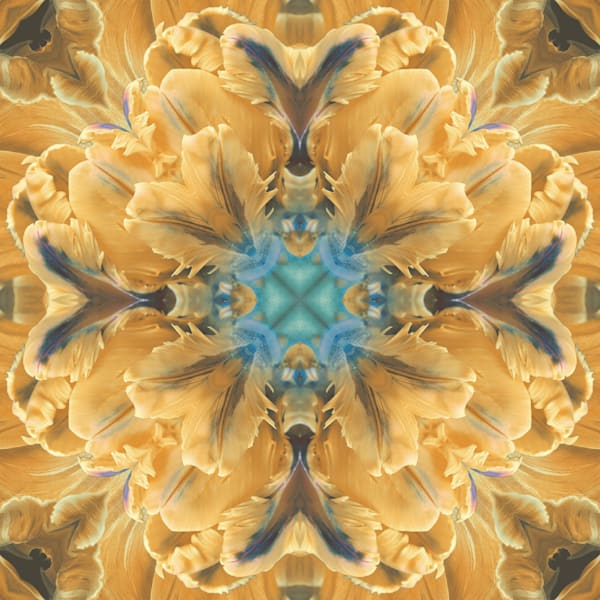 Kaleidoscopic Floral 2.2 (Yellow)