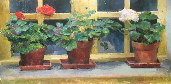 Geraniums at Beaumes de Venise -Provence