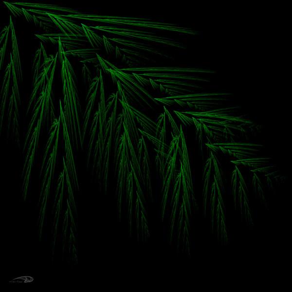 Digital Fern digital art by Cheri Freund